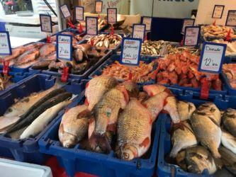 Fisch Vismarkt Groningen